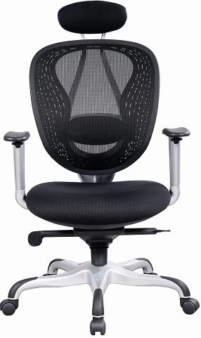 Zason Executive Office Chair
