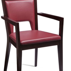 Zefir Stylish Wine Red Faux Leather Arm Chair