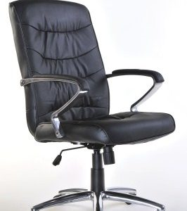 Parr Leather Swivel Office Chair