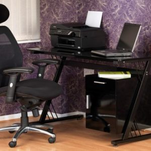 Butte Desk & Maine Executive Chair Combo
