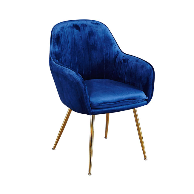 Lourd Dining Chair Royal Blue With Gold Legs (Pack of 2)