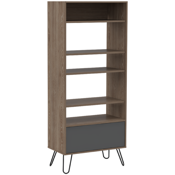 Vetty display bookcase with door