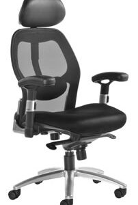 Resden Mesh Back Executive Office Chair
